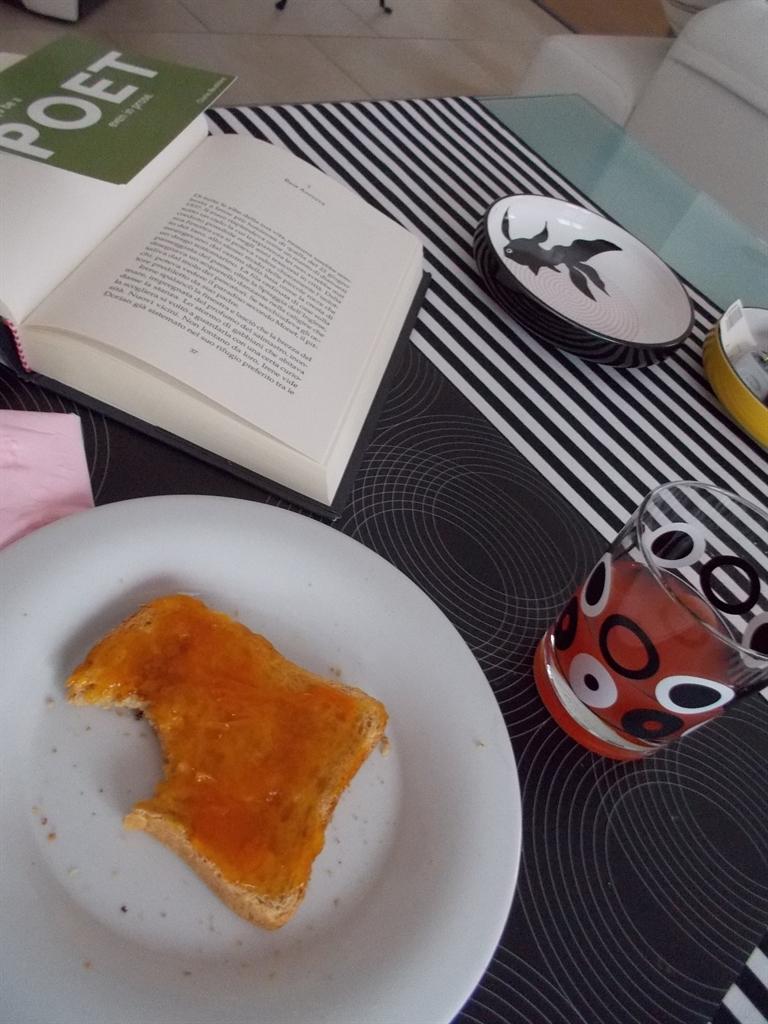 Cosa mangia un elfo a colazione pattini - Cosa mangia un cucciolo di talpa ...