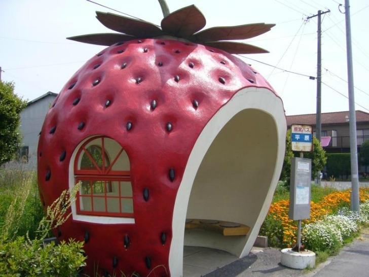 """Fermate dell""""autobus a forma di frutta: in Giappone si può!"""