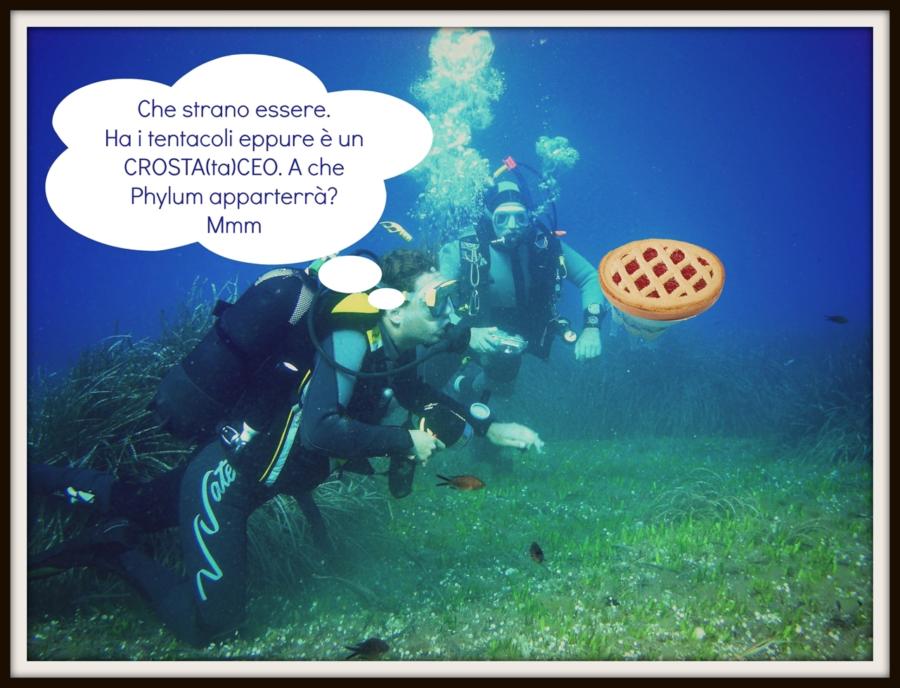 La colazione nel mondo…dei biologi marini!