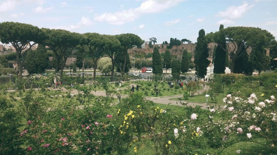 Colazione tra le rose: un angolo di paradiso a Roma