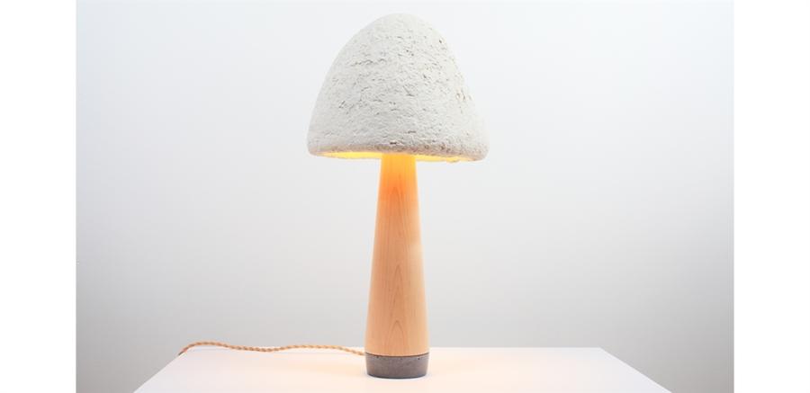 Le lampade fatte coi funghi