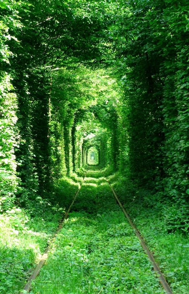 """Una dolce colazione nel """"Tunnel dell""""Amore"""""""