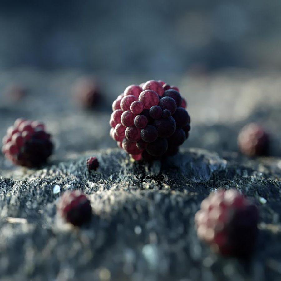 Come è fatta la frutta aliena?