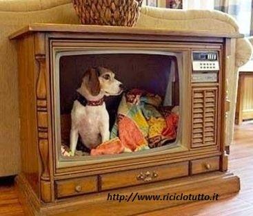 Un cambio nel palinsesto: la televisione si ricicla!